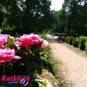 Schloss-Muenchweiler-Freie-Trauung-Rebecca-u-Kevin_008