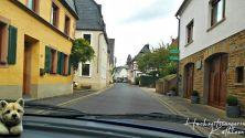 0_Kloster_Machern_003